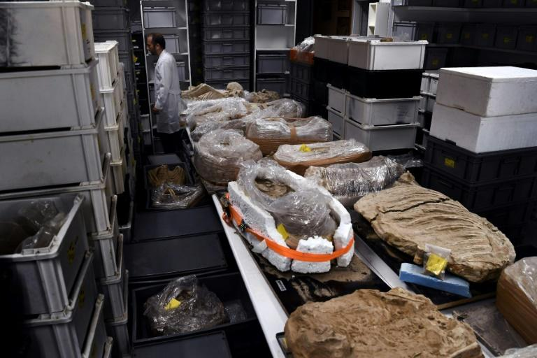Archeological findings stored in a lab at the American School of Archeology in Athens, pictured on July 7, 2017