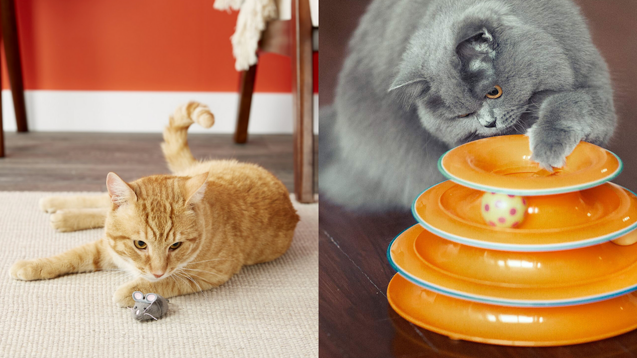 20 gifts for those who love cats more than people