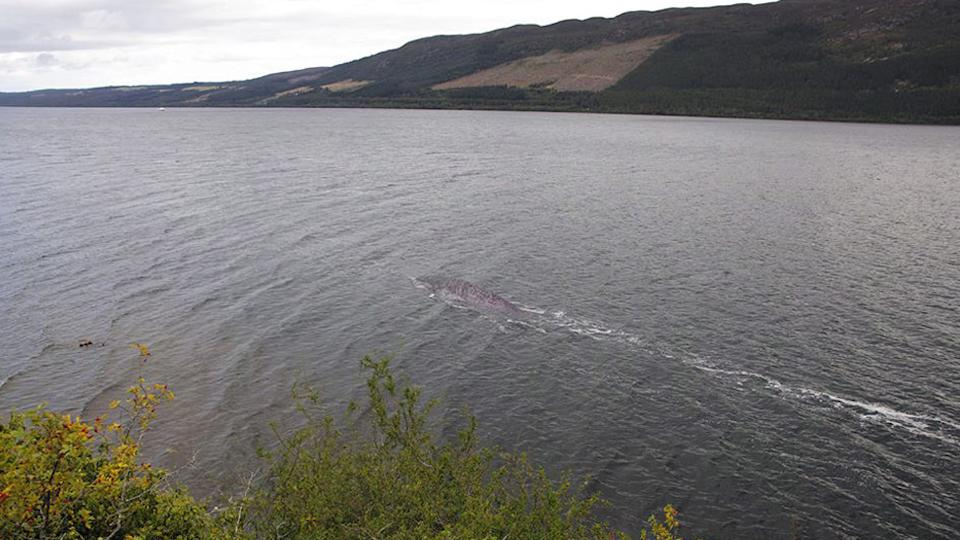 A tourist has sparked debate online over the existence of the Loch Ness monster after finding mysterious photos from a holiday to Scotland.