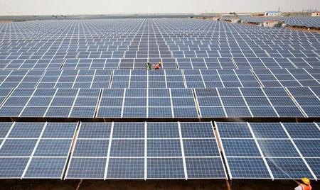 FILE PHOTO: Workers install photovoltaic solar panels at the Gujarat solar park under construction in Charanka village in Patan district of the western Indian state of Gujarat, April 14, 2012. REUTERS/Amit Dave/File Photo