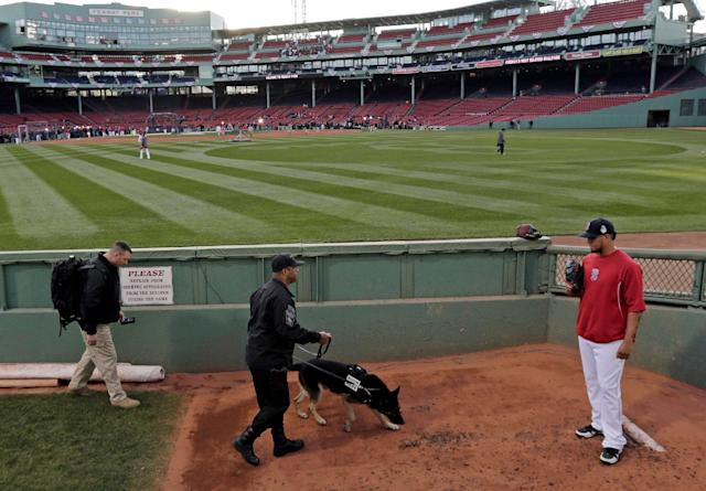 Boston Red Sox starting pitcher Felix Doubront watches as a police dog sniffs around the bullpen before Game 2 of baseball's World Series against the St. Louis Cardinals Thursday, Oct. 24, 2013, in Boston. (AP Photo/Charles Krupa)