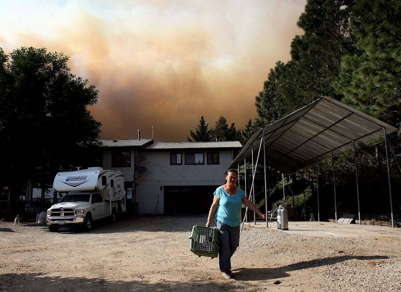 Irene Jenke, evacuates from her home on Morris Ranch Rd. with her pets from the Mountain Fire near Lake Hemet on Tuesday July 16, 2013. The 14,200 acre forest fire near Idyllwild Calif., has caused Idyllwild and adjacent communities east of Highway 243 to issued mandatory evacuations for hundreds of homes Wednesday. (AP Photo/The Press-Enterprise, Frank Bellino)