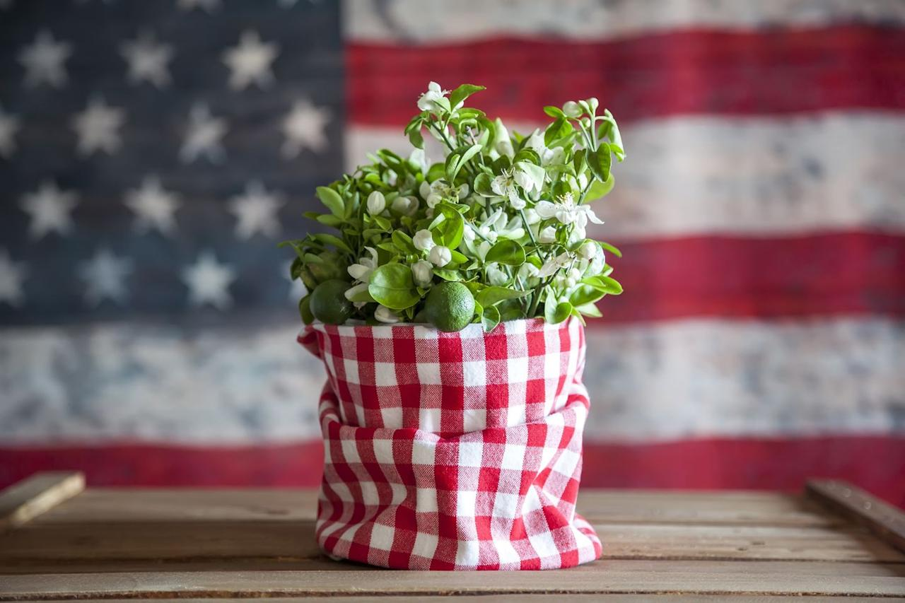 "<p>Looking for a tasteful way to display your favorite greenery? Show off your creativity by covering a plant pot with classic red and white gingham. </p><p><a class=""body-btn-link"" href=""https://go.redirectingat.com?id=74968X1596630&url=https%3A%2F%2Fwww.etsy.com%2Flisting%2F122139248%2Friley-blake-designs-medium-gingham-in%3Fga_order%3Dmost_relevant%26ga_search_type%3Dall%26ga_view_type%3Dgallery%26ga_search_query%3Dred%2Bgingham%2Bfabric%26ref%3Dsc_gallery-1-1%26referring_page_type%3Dmarket%26plkey%3D4dbf9637ece859d52992302cb0f48c273454761c%253A122139248&sref=http%3A%2F%2Fwww.elledecor.com%2Flife-culture%2Fentertaining%2Fnews%2Fg3111%2F4th-of-july-decorations%2F"" target=""_blank"">SHOP NOW</a> <em>Red Gingham, Starting from $2.25</em></p>"
