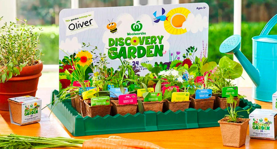 A marketing image of the Woolworths Discovery Garden, with 24 herbs and flowers on display.