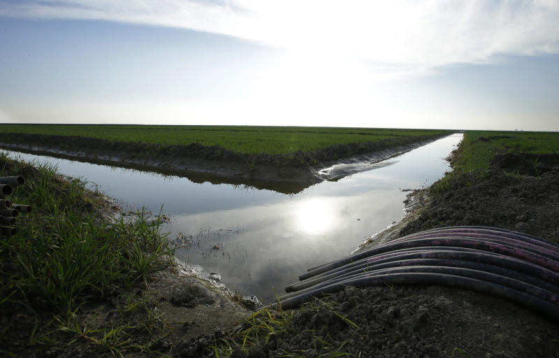 FILE - In this Feb. 25, 2016 file photo, water flows through an irrigation canal to crops near Lemoore, Calif. Farmers in the nation's largest irrigation district are considering whether to sign on to California's biggest water project in a half-century. The Westland Water District is meeting Tuesday, Sept. 19, 2017, in Fresno for a possible vote on its participation in Gov. Jerry Brown's $16 billion twin tunnels project. (AP Photo/Rich Pedroncelli, File)