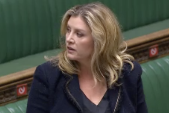 Penny Mordaunt said the crossings are an 'appalling and dangerous trade in human beings'. (Parliamentlive.tv)