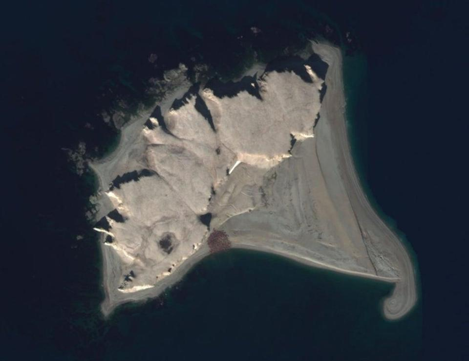 Satellite image of an Atlantic walrus haul-out (MAXAR Geohive)
