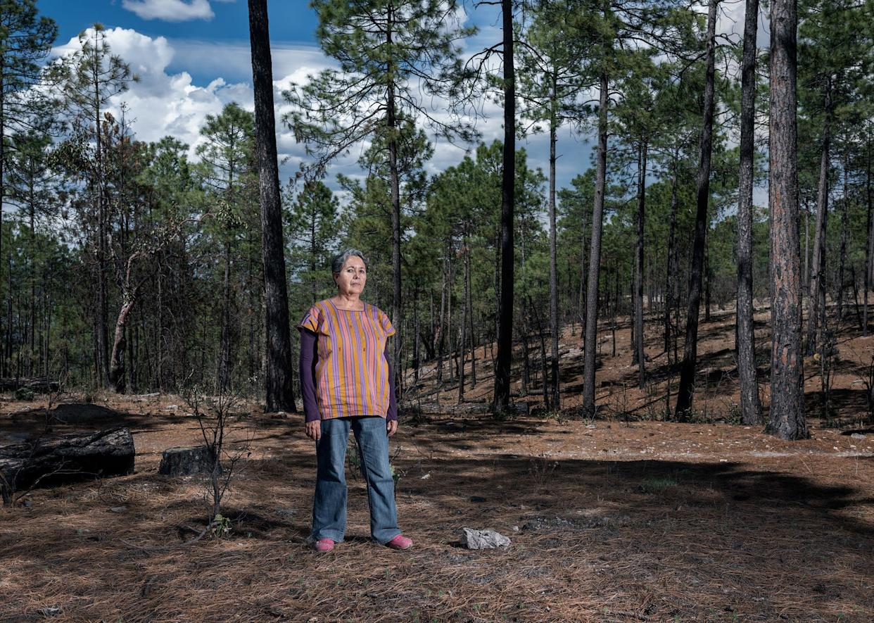 Isela González is head of the Sierra Madre Alliance, an organization that has defended indigenous rights in Mexico's Sierra Tarahumara for the last 20 years. (Photo: Thom Pierce | Guardian | Global Witness | UN Environment)