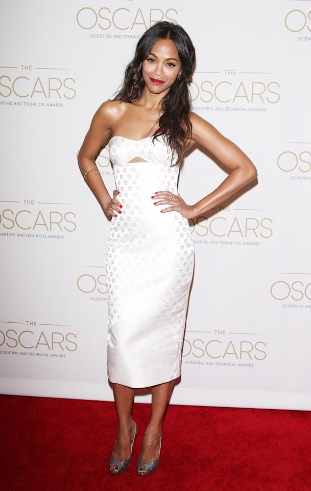 BEVERLY HILLS, CA - FEBRUARY 09:  Zoe Saldana arrives at the Academy Of Motion Picture Arts And Sciences' Scientific and Technical Awards ceremony held at Beverly Hills Hotel on February 9, 2013 in Beverly Hills, California.  (Photo by Michael Tran/FilmMagic)