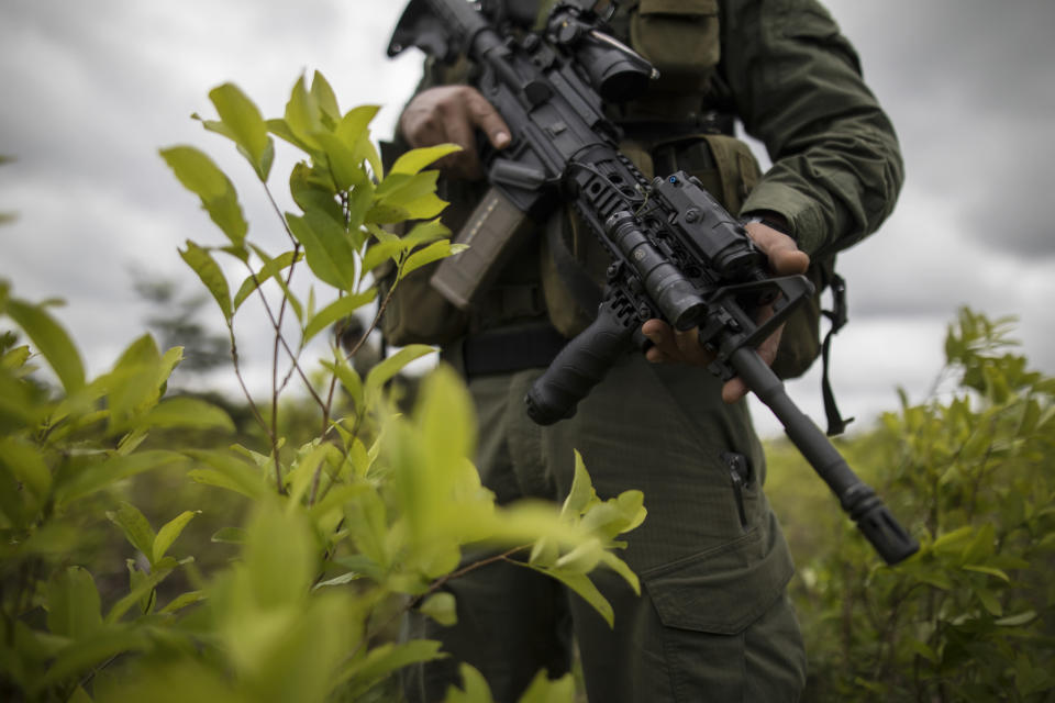 FILE - In this Dec. 30, 2020 file photo, a police officer stands on a coca field during a manual eradication operation in Tumaco, southwestern Colombia. The case of Colombian Capt. Juan Pablo Mosquera, who faces up to 20 years in prison if convicted in the U.S. of obstructing justice for allegedly selling evidence and information, is the latest black eye for the DEA program to train and support foreign law enforcement that has been repeatedly subverted by corrupt cops and deadly leaks. (AP Photo/Ivan Valencia, File)
