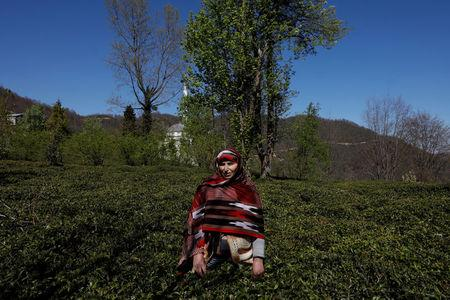 Cleaner and farmer Fatma Peker, 58, says she will vote 'Yes' in the referendum. She poses in her tea field in Surmene a town in Trabzon Province, Turkey, April 4, 2017.  REUTERS/Umit Bektas