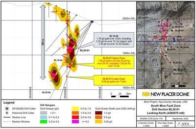 Figure 1. Bolo Gold Project 2020 BL20-01 Drill Section (CNW Group/New Placer Dome Gold Corp.)