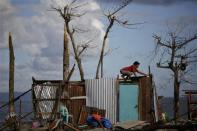 A man repairs his house, which was damaged by Typhoon Haiyan, at a coastal area south of Tacloban November 16, 2013. Survivors began rebuilding homes destroyed by Haiyan, one of the world's most powerful typhoons, and emergency supplies flowed into ravaged Philippine islands, as the United Nations more than doubled its estimate of people made homeless to nearly two million. REUTERS/Damir Sagolj
