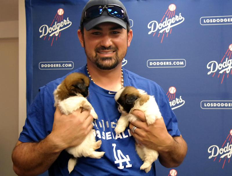 Correction: Dodgers With Dogs story