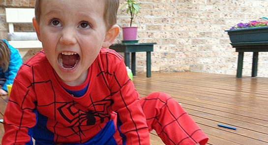 Police are to announce a reward for information into William Tyrrell's disappearance.