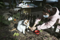 """Street cat """"Flower"""" is fed by volunteer Yuju Huang at a Midnight Cafeteria in Taipei, Taiwan, Sunday, Dec. 27, 2020. Launched in September, the """"cafeteria"""" is actually 45 small wooden houses painted by Taiwanese artists and scattered across Taipei. The idea is to give the cats a place to rest while making feeding them less messy. (AP Photo/Chiang Ying-ying)"""