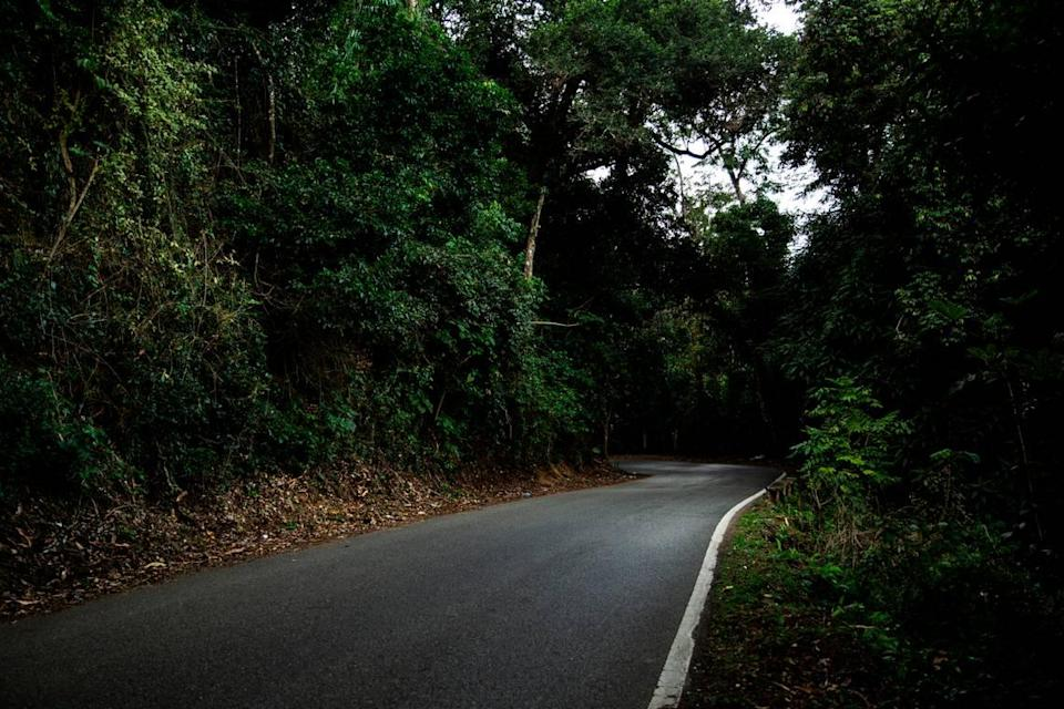 The rural highway in the Puerto Rican town of Coamo where Angie González was found dead in January 2021.