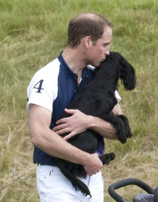 Celebrity photos: Prince William spent some quality time with his pet pooch Lupo over the weekend – and couldn't help but give her a kiss. Too. Cute.
