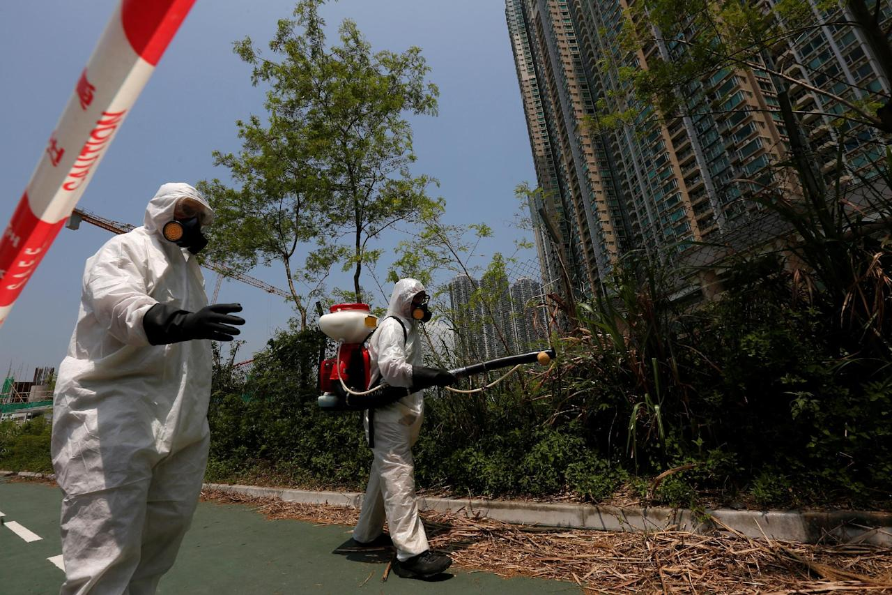 Workers from the Food and Environmental Hygiene Department kill mosquitoes outside a construction site near a residential area in Hong Kong, China August 26, 2016, after the first case of Zika was confirmed in the city.     TPX IMAGES OF THE DAY