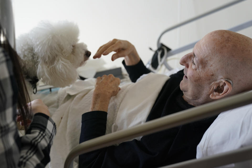 Jeff Philipson, 80, right, smiles as he visits with Zeus, a bichon frise, at The Hebrew Home at Riverdale in New York, Wednesday, Dec. 9, 2020. New dog recruits are helping to expand the nursing home's pet therapy program, giving residents and staff physical comfort while human visitors are still restricted because of the pandemic. (AP Photo/Seth Wenig)