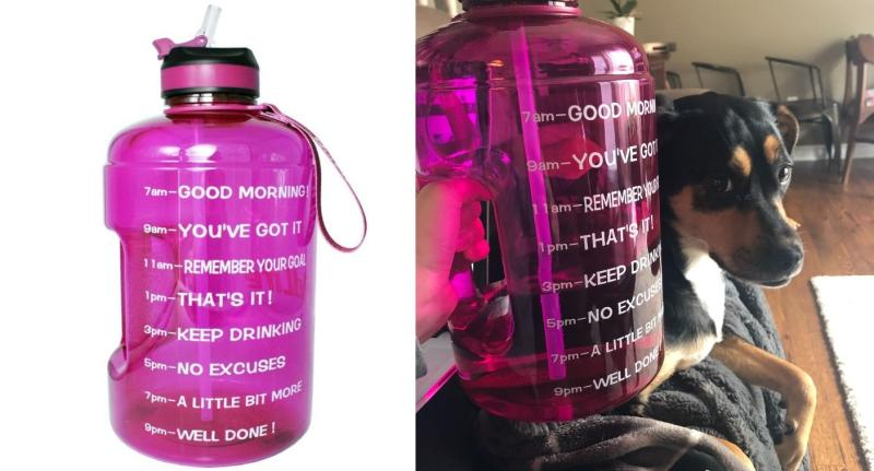 My gallon water bottle (and my dog) are never out of reach while working from home. (Image via Amazon/supplied).