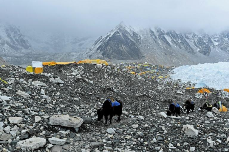 Over the last two months since the climbing season began, more than 1,000 mountaineers and their mainly Nepali guides have been camped in the tent city at base camp
