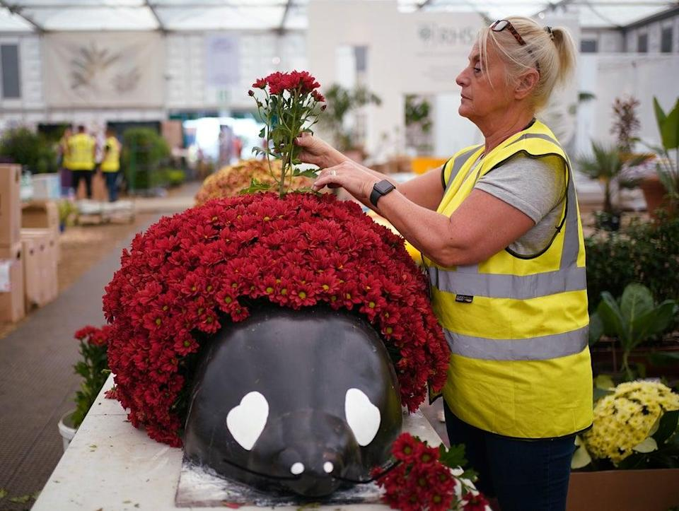 Chrysanthemums were also planted in a giant ladybird during the build day, ahead of next week's show (Yui Mok/PA) (PA Wire)