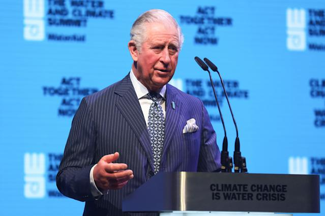 Charles gave a speech to delegates at a WaterAid event. (Getty Images)