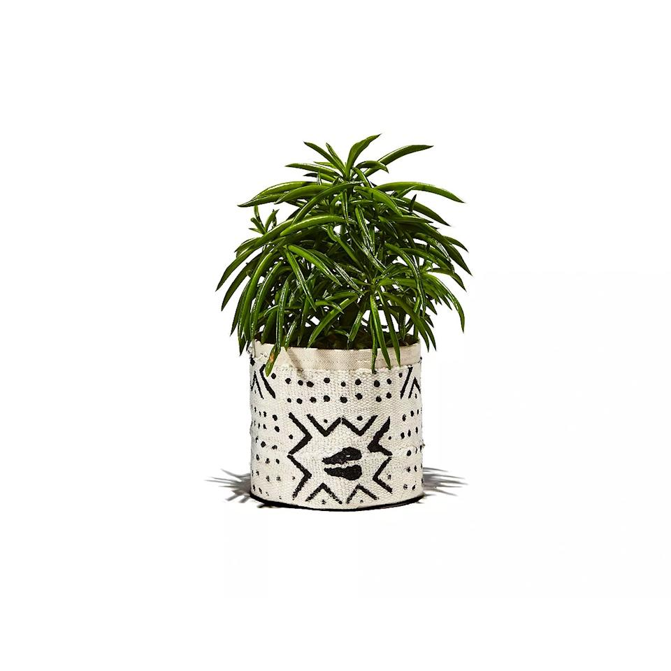 "$28, Bloomingdales. <a href=""https://www.bloomingdales.com/shop/product/plant-sax-mud-cloth-sax-plant-vessel?"">Get it now!</a>"