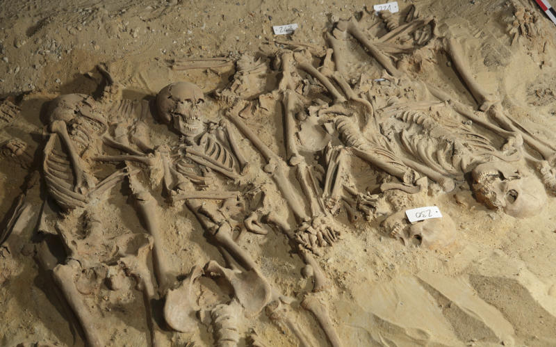 "Skeletons are pictured at the site where eight mass graves, with more than 200 skeletons, were found under the Monoprix Reaumur Sebastopol store in Paris March 10, 2015 . The discovery, made during renovation work in the cellar of the branch of Monoprix, has revealed what experts believe are victims of a sudden illness resembling an outbreak of Bubonic plague and could prove useful to historians studying burials in the Middle Ages. Eight communal graves have so far been discovered, seven small plots and one much larger one in which 150 skeletons have already been unearthed. The supermarket stands on the site of the cemetery of the Trinity hospital, founded in the 12th century and destroyed at the end of the 18th, and experts say the organisation of the graves points to a ""mass mortality crisis"". Picture taken March 10, 2015. REUTERS/Philippe Wojazer (FRANCE - Tags: SOCIETY SCIENCE TECHNOLOGY TPX IMAGES OF THE DAY)"