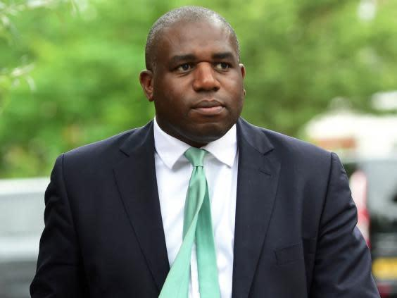 David Lammy, a leading supporter of the People's Vote campaign (PA)