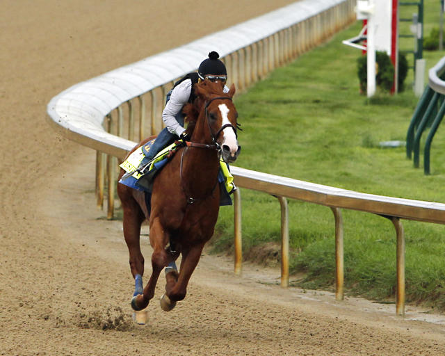 Jockey Martin Garcia works Triple Crown hopeful Justify at Churchill Downs. (AP)