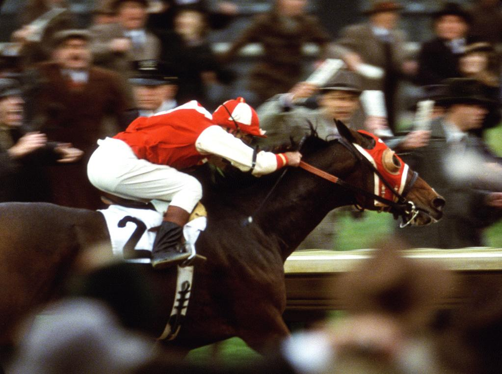 """<a href=""""http://movies.yahoo.com/movie/1808437039/info"""">SEABISCUIT</a>  Based on: The prize-winning horse that became a symbol of hope during the Great Depression   There have been at least two movies and a best-selling book based on the story of Seabiscuit. That's a lot of press for a horse. Of course, Seabiscuit was a pretty awesome horse."""