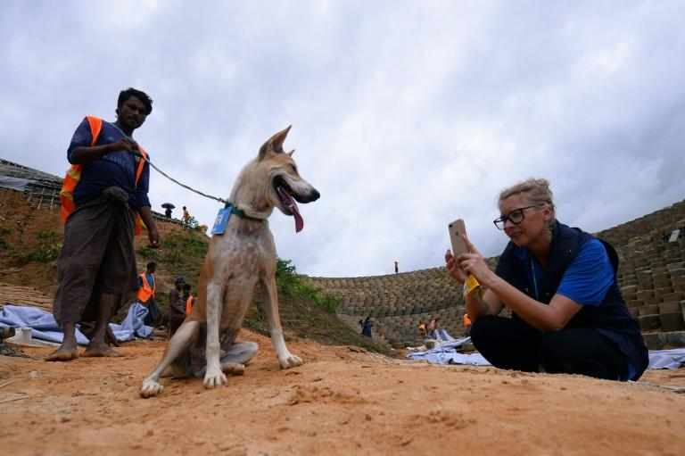 World Food Programme workers rescued a three-week-old puppy abandoned on the beach, adopting him and naming him Foxtrot (AFP Photo/Munir UZ ZAMAN)
