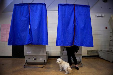 FILE PHOTO: A voter with her dog casts her ballot in the Pennsylvania primary at a polling place in Philadelphia, Pennsylvania, U.S., April 26, 2016. REUTERS/Charles Mostoller/File Photo