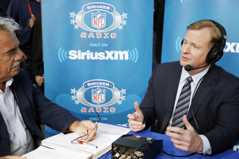 NFL commissioner Roger Goodell released a statement about sports gambling. (AP)