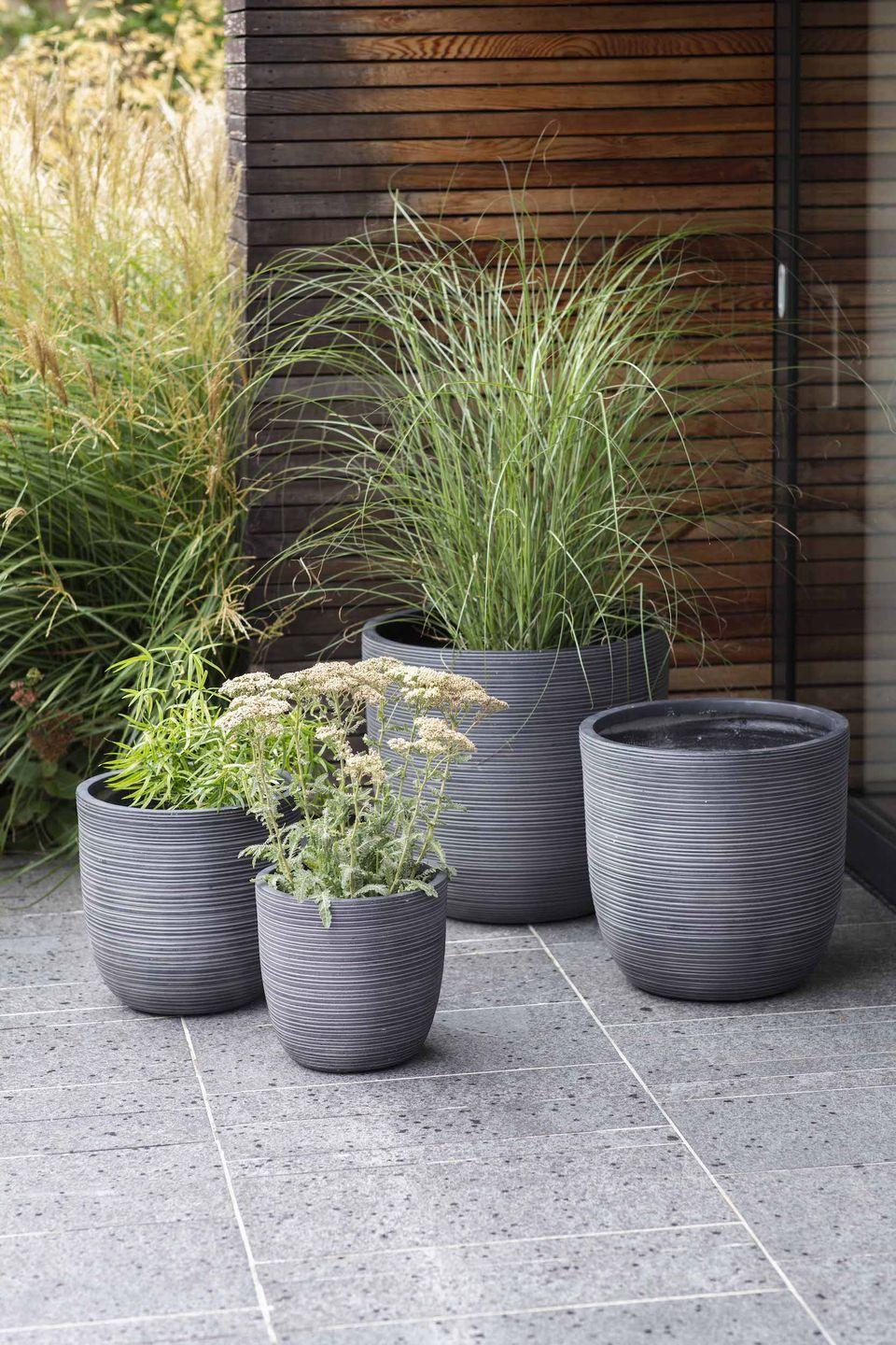 """<p>No lawn? <a href=""""https://www.housebeautiful.com/uk/garden/a30988214/container-gardening/"""" rel=""""nofollow noopener"""" target=""""_blank"""" data-ylk=""""slk:Container gardening"""" class=""""link rapid-noclick-resp"""">Container gardening</a> is a really easy way to get your garden looking beautiful with blooming flowers, and it's especially ideal for patios, balconies or other paved areas. Remember, containers can restrict root growth, so you need to ensure an even water supply and good drainage, and choose the right <a href=""""https://www.housebeautiful.com/uk/garden/plants/a28431929/garden-compost/"""" rel=""""nofollow noopener"""" target=""""_blank"""" data-ylk=""""slk:compost"""" class=""""link rapid-noclick-resp"""">compost</a>.<strong><br></strong></p><p><strong>Pictured: </strong>Rodborough Planters, <a href=""""https://go.redirectingat.com?id=127X1599956&url=https%3A%2F%2Fwww.gardentrading.co.uk%2F_all%3Fsearchterm%3DRodborough%2BPlanter&sref=https%3A%2F%2Fwww.housebeautiful.com%2Fuk%2Fgarden%2Fdesigns%2Fg28%2Fgarden-ideas-on-a-budget%2F"""" rel=""""nofollow noopener"""" target=""""_blank"""" data-ylk=""""slk:Garden Trading"""" class=""""link rapid-noclick-resp"""">Garden Trading </a></p>"""