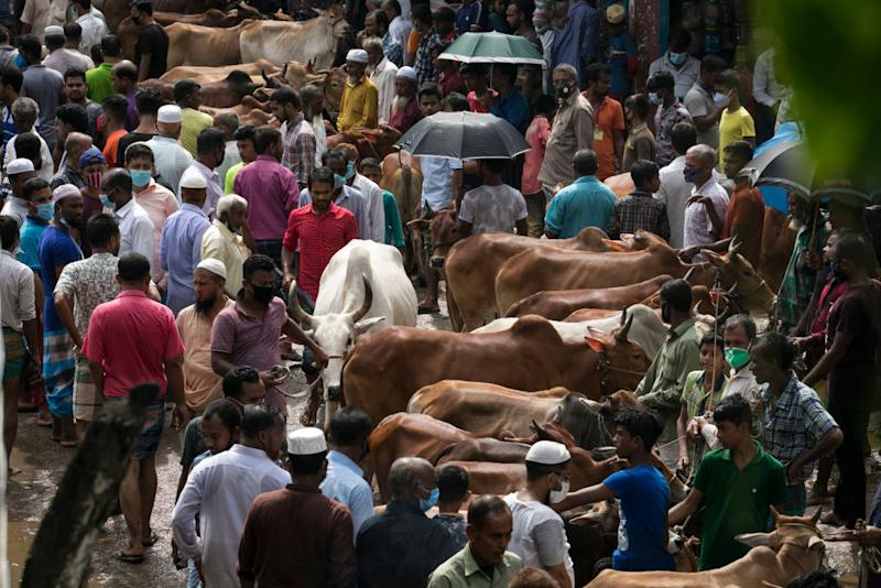 Photo shows large crowds of people and cattle at market.
