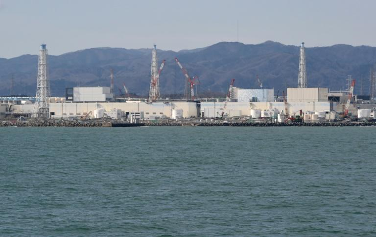 Clean-up efforts at Japan's Fukushima nuclear power have reduced adiation levels in some areas by 80 percent but forested land remains untouched and is a potential source of contamination for years to come
