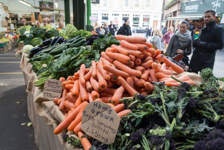 Brexit poses a real threat to food security in the UK, warn academics (Alex Segre/Getty Images)