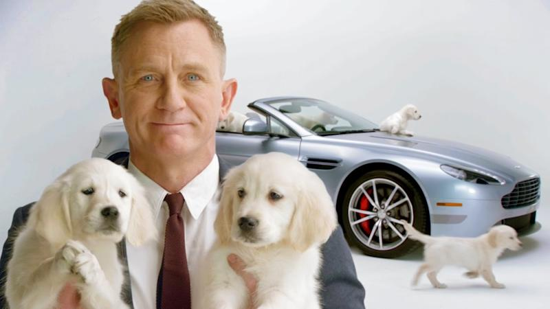 Daniel Craig Teams Up With Puppies For Omaze