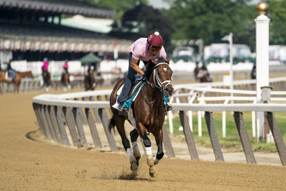 Belmont Stakes entrant Rombauer takes a training run on the main track ahead of the 153rd running of the Belmont Stakes horse race, Wednesday, June 2, 2021, at Belmont Park in Elmont, N.Y. (AP Photo/John Minchillo)