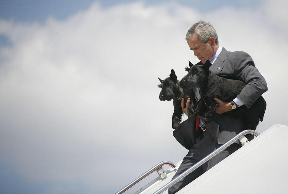 <p>You might think that a president would let someone else carry his dogs, but that wasn't the case for George W. Bush. He carefully escorted family pets Barney and Ms. Beazley off of Air Force One in 2006.</p>