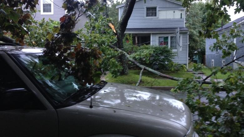 2016 storm damage was costliest in a decade, says Nova Scotia Power