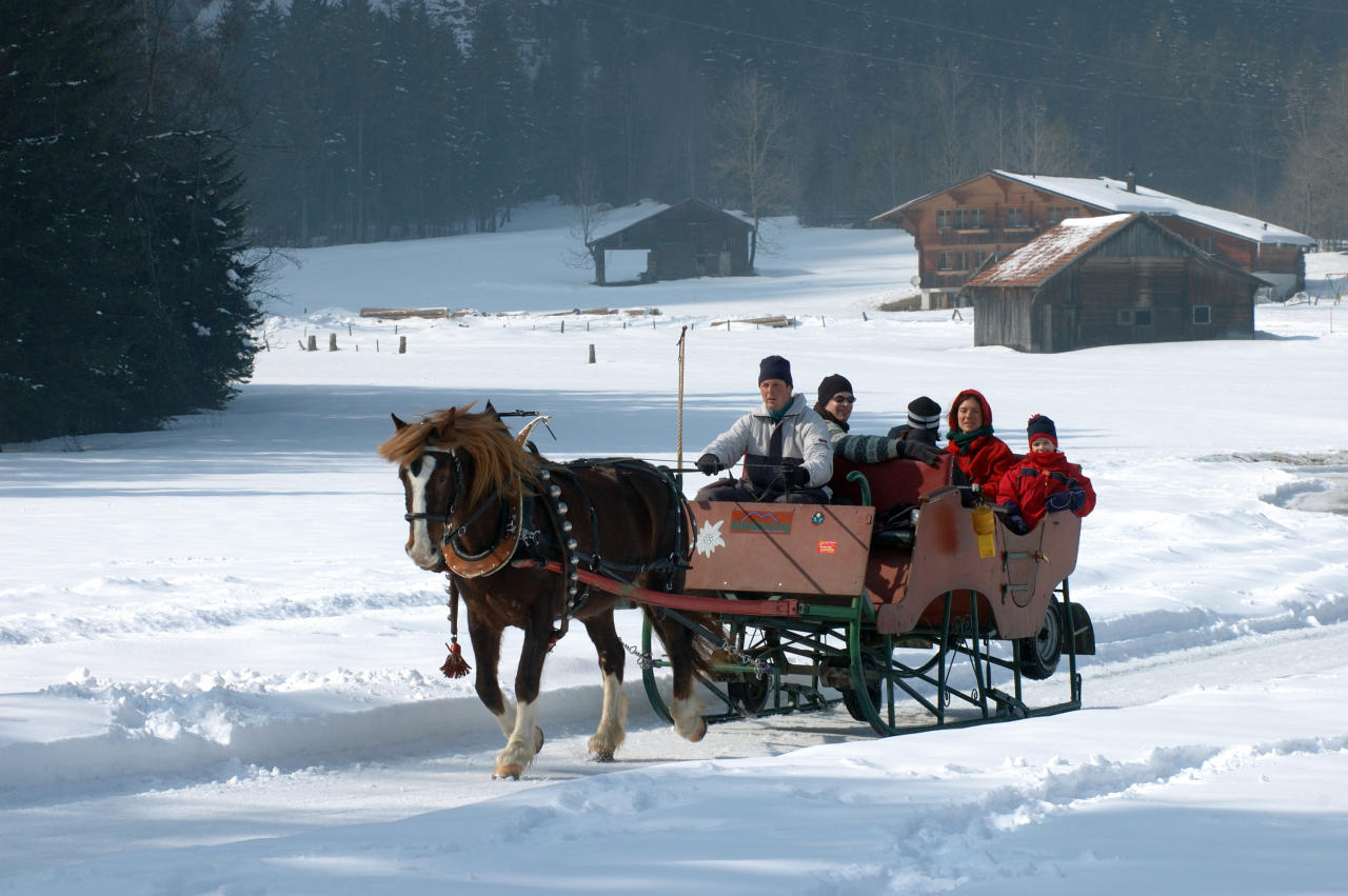 <p>Christmas in Switzerland's Kander Valley offers snowy mountain scenery and festive activities for all the family to try. How about skiing, ice skating, snowshoeing or tobogganing? And don't miss a sleigh ride through the picture-postcard pretty village of Kandersteg. A seven-night trip with Inntravel costs from £1,525 per adult, with child prices from £415 (2-5 years), £895 (6-11 years), £1,098 (12-15 years) including return flights, transfers, a horse drawn sleigh ride, torch-lit stroll with mulled wine, gala dinner and a visit from Father Christmas. <em>[Photo: Inntravel]</em> </p>