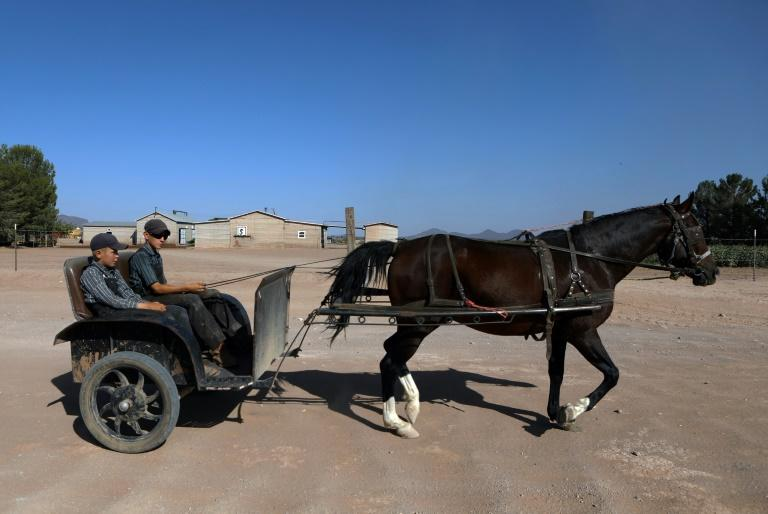 Mexican Mennonites learned of pandemic through rare online foray