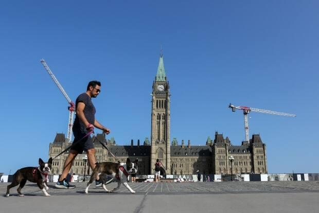 A man walks dogs past Parliament Hill in Ottawa, Ontario, Canada, August 15, 2021. (Lars Hagberg/Reuters - image credit)