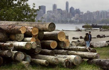 FILE PHOTO - Logs sit piled on a Vancouver beach