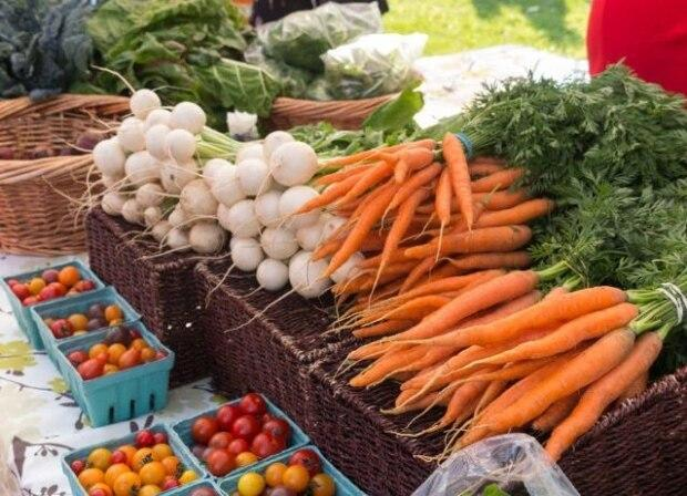 The town of Quispamsis is looking at getting its very own farmers market this summer. (West Kootenay EcoSociety - image credit)