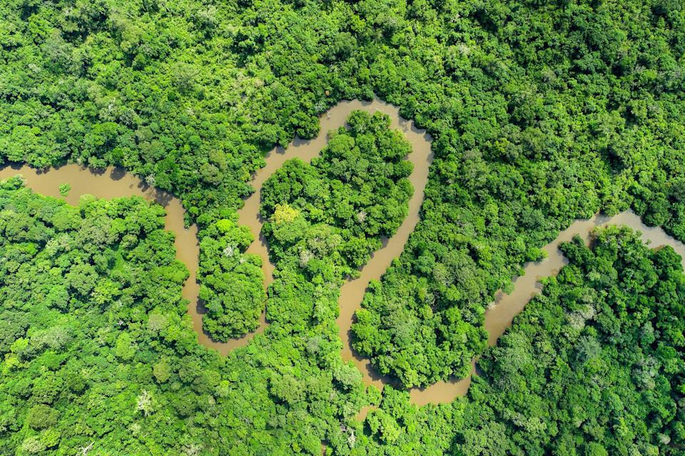 Aerial view of the rainforest of the Congo Basin in Odzala National Park, Republic of Congo